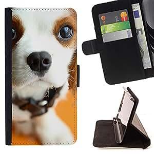 Stuss Case / Funda Carcasa PU de Cuero - Pointer Inglés raposero Jack Russell Terrier - HTC Desire 626