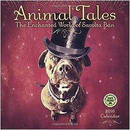 animal tales 2016 wall calendar the enchanted world of sarolta ban