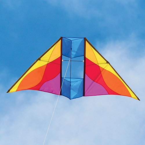 Into The Wind Mesa Delta Conyne Kite by Into The Wind