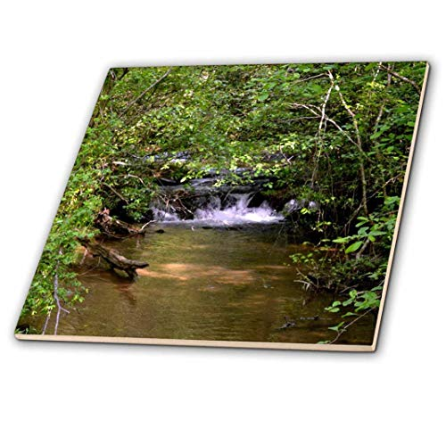 3dRose ct_50838_4 A Small Waterfall in a Stream Ceramic Tile, 12