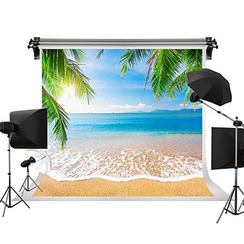 Kate 10x10ft/3x3m(W:3m H:3m) Beach Backdrop Summer Background Sea Blue Sky Background Palm Trees Summer Background Photography Photo Studio Cloth Backdrop