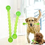 hwangli Dog Puppy Teeth Stick Tooth Cleaning Food Grade TPR Pet Chew Treat Play Toy - Green L