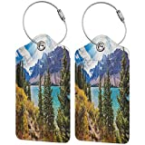 Canadian Tourister Luggage Tags