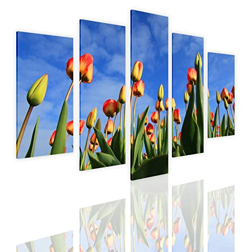 s Field Split 5 Panels FRAMED STRETCHED CANVAS (100% Cotton) Gallery Wrapped - READY TO HANG | 48