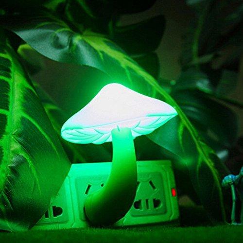 Sea Of Green Led Lights - 3