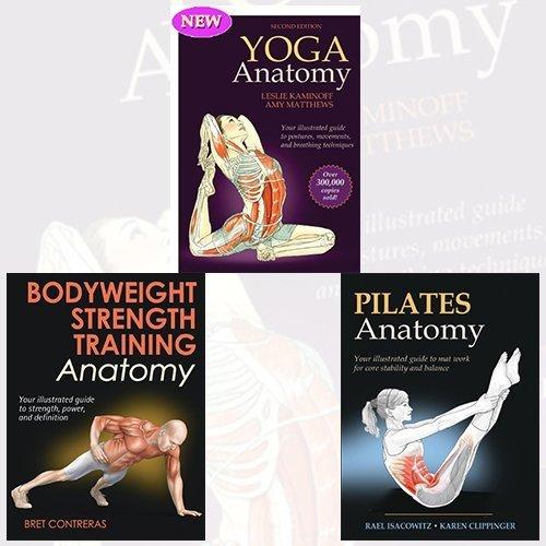 Yoga Anatomy, Bodyweight Strength Training Anatomy and ...