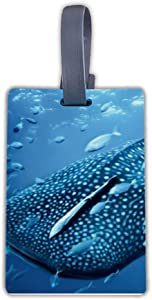 Luggage Tags Baggage Tags Id Labels Whale Shark Tours Fit for Suitcases Backpacks