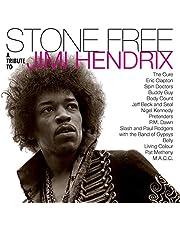 Stone Free: Jimi Hendrix Tribute (Black & Clear Vinyl) (Rocktober)