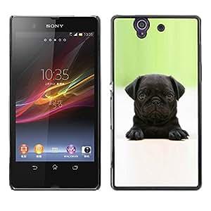 VORTEX ACCESSORY Hard Protective Case Skin Cover - baby pug puppy black tiny cute dog - Sony Xperia Z L36H C6602 C6603 C6606 C6616