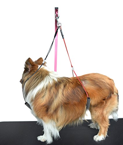 SHELANDY Pet Haunch Holder Dog Grooming Loop restraint for small large dogs (Small)
