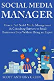 Social Media Manager: How to Sell Social Media Management & Consulting Services to Small Businesses Even Without Being an Expert