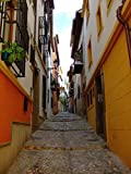 Gifts Delight LAMINATED 24x32 inches Poster: Street Lane Granada Andalusia Spain