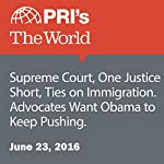 Supreme Court, One Justice Short, Ties on Immigration. Advocates Want Obama to Keep Pushing | Anglilee Shah