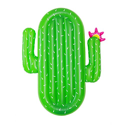 Giant Inflatable Cactus Float 71