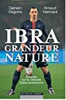 Ibra grandeur nature par Hermant