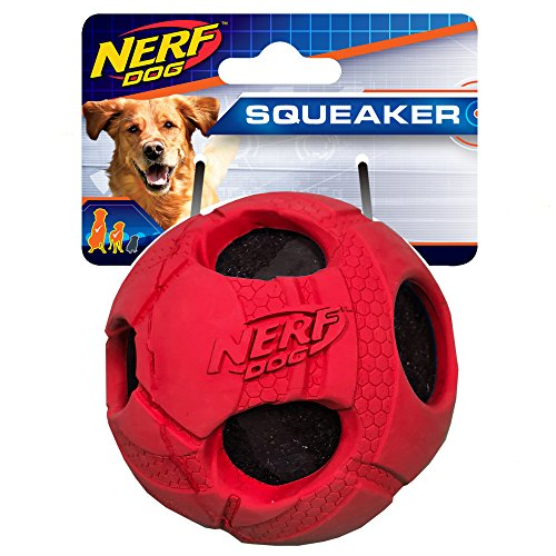 (Nerf Dog 3.5in Bash Rubber Wrapped Tennis Ball: Red, Dog Toy)