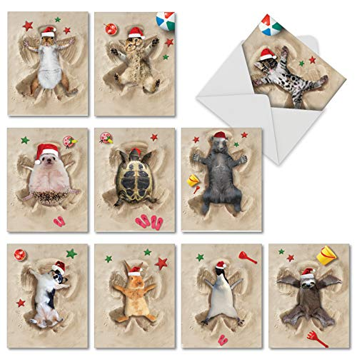 Holiday Sand Angels - 10 Assorted Animal Merry Christmas Note Cards with Envelopes (4 x 5.12 Inch) - Animal Beach Vacation, Xmas Happy Holiday Cards for Kids - Pet Dog, Cat, Wildlife AM6844XSG-B1x10 Angel Cat Greeting Card