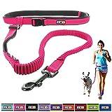 PAWTITAS Reflective Padded Anti-shock Running Dog Leash, Pink