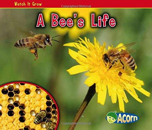 A Bee's Life (Watch It Grow)