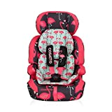 Cosatto Zoomi Number 123 Car Seat - Flamingo Fling by Cosatto