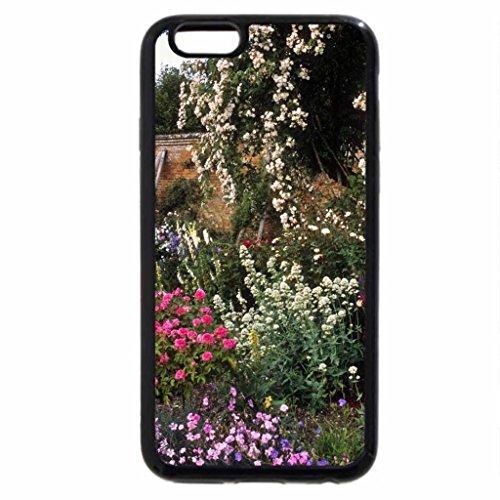 iPhone 6S / iPhone 6 Case (Black) Beautiful Rose Garden