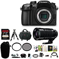 Panasonic LUMIX 16.05MP Mirrorless Camera (Body Only) with Leica 100-400mm Lens & 128GB Memory Card Bundle