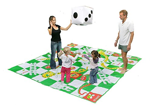 Giant Snakes And Ladders]()