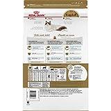 Royal Canin Ragdoll Breed Adult Dry Cat Food, 7