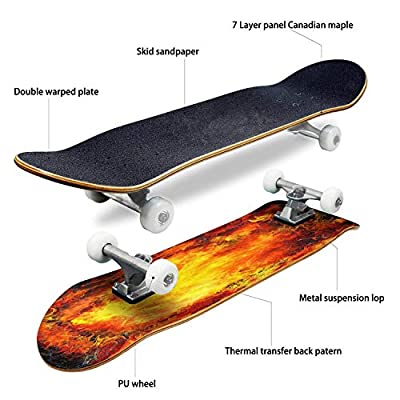 boho illustration in art tattoo style with dragon fantasy animal Skateboard Complete Longboard 8 Layers Maple Decks Double Kick Concave Skate Board, Standard Tricks Skateboards Outdoors, 31