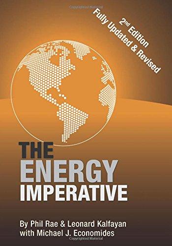 Download The Energy Imperative pdf epub