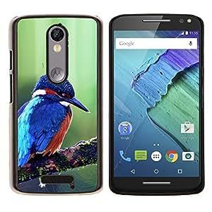 EJOOY---Cubierta de la caja de protección para la piel dura ** Motorola Moto X3 3rd Generation ** --Majestic azul lindo pájaro del martín pescador