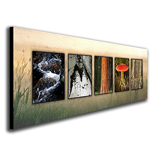 Personalized Wilderness Nature Name Alphabet Photography Art! (Block Mount - 6.5 x 18)