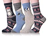 Dosoni Girl Novelty Cartoon Animal Lovely Cute socks 4 packs-Gift Idea (Penguin/Black)