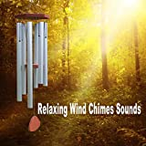 Relaxing Wind Chimes Sounds (Relaxing Sounds for Stress Relief & Healing Sound Therapy)