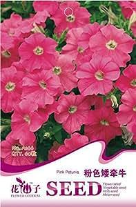 Caliente! 50piece 16 colores berro Semillas Nuevo Jardín Flores Cuatro temporada de siembra de las semillas de flor del Mundo raro para Jardín
