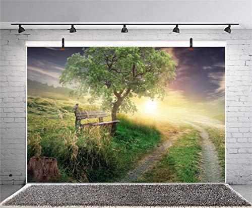 Leyiyi 10x8ft Road to Heaven Photography Backdrop Spring Wild Land Grassland Meadow Pathway Bench Bird Big Tree Sky Cloud Sunset Background Happy Halloween Xmas Photo Portrait Vinyl Video Studio Prop ()