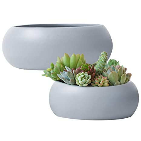 Succulent Pots Planter Set2, Grey Ceramic Cactus Container, 10.6u0026quot;  Large Garden Indoor Flower