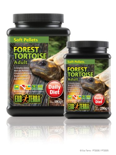 Exo Terra Soft Adult Forest Tortoise Food, 20.8-Ounce ()
