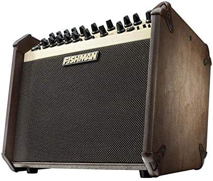 Fishman Loudbox Artist - Amplificador de guitarra acústica: Amazon ...