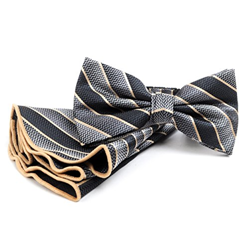 Men's Regency Stripes Banded Bow Tie and Matching Pocket (Regency Stripe)