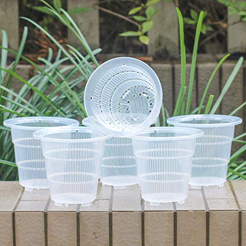 Meshpot 4 Inch Clear Plastic Orchid Pots with Holes - 6 - Plastic Orchid