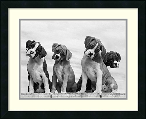 Framed Art Print  Wonder By Sharon Beals  Outer Size 22 X 18