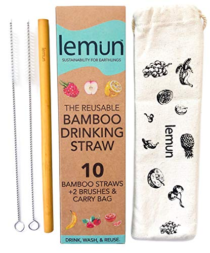 Bamboo Straws - Reusable Drinking Straws Natural | Set of 10 with Cotton Bag & 2 Cleaning Brushes, Kids and Adults | Zero Waste Plastic Alternative | 8in ()