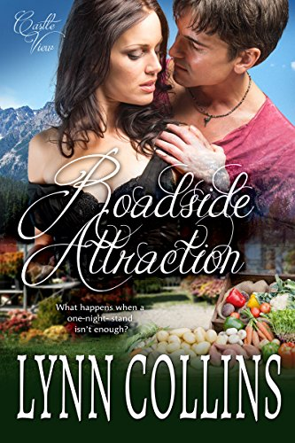 Roadside Attraction (Castle View Series Book 2) by [Collins, Lynn]