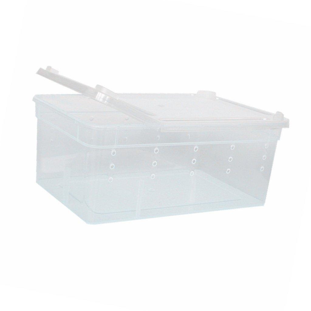 Réservoir Boîte Plastique Léger pour Elevage Eclosion de Animal Reptile - Blanc - H-3, 19x12.5x7.5cm Generic