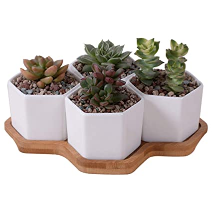 Outgeek 4PCS Succulent Pot Decorative Simple Hexagon Plant Pot with Bamboo Tray