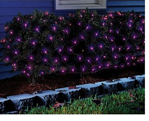 Sylvania Halloween Series Net-style Lights, Purple Bubls 100 Lights