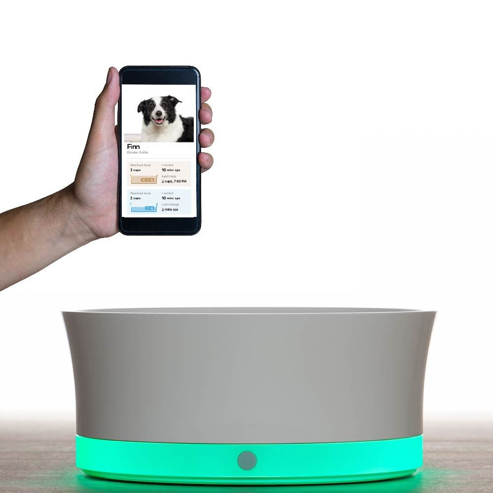 Obe Probowl Smart Dog Bowl for Medium & Large Dogs Over 30 Lbs, Wifi Enabled App for Iphone, Award Winning Dog Bowl, White