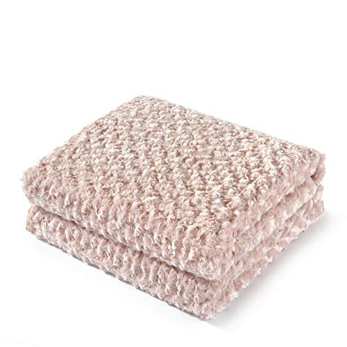 Simple&Opulence Super Soft Microfiber Stereo Rose Pattern Home Furnishing Throw Blanket -