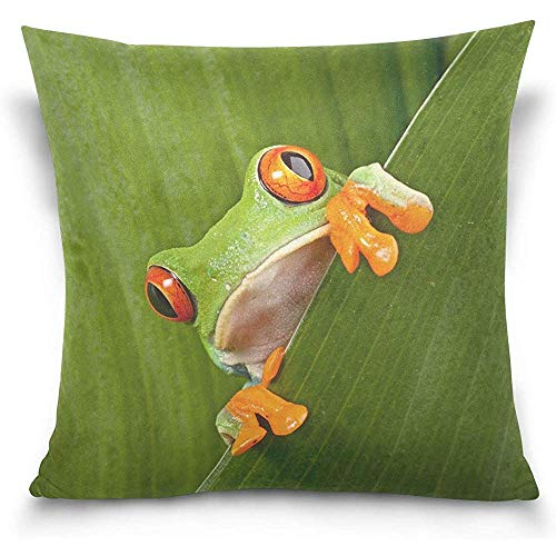Cvhtr3m Red Eyed Tree Frog Green Leafs Decorative Pillow Case Home Decor Square 18 x 18 Inch Pillowcase